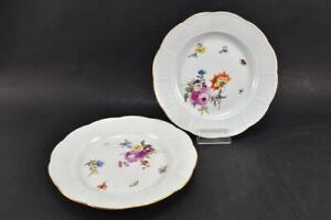 k66b12- 2x Meissen Porzellan Speiseteller, Altozier Blumen mit Insekten