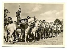 German WW2 PC Waffen Cavalry Trumpeter DRUM Division WHITE HORSES free shipping