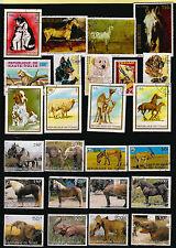 TCHAD Animaux : Nos amis les bètes, chiens,chevaux,éléphant,divers   K3-25