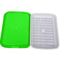 Seed Sprouter Tray Double-layer Soilless Culture Beans Hydroponic Nursery Tray n