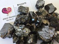 Noble Elite Silver Shungite Rough Stone 2 oz Healing Crystal Water Purification