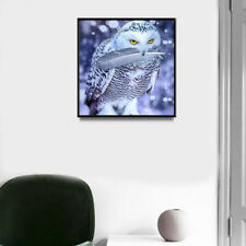 5D Owl In The Snow DIY Diamond Painting Embroidery Cross Craft Stitch Art Kit J