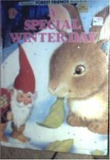 A Special Winter Day (Honey Bear Books: Forest Fri