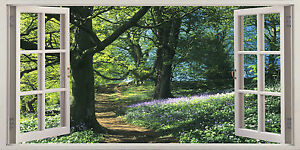 Bluebells Woodland In Summer 3D Effect Window Canvas Picture Wall Art Prints