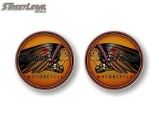 """2 Indian Motorcycle 8"""" Lost Warrior Graphics Decals for Trailer or Saddle Bags"""