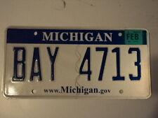 2008 MICHIGAN Michigan.gov License Plate BAY 4713 MI three letter word