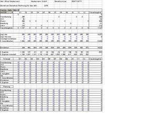 Einnahme- Überschußrechnung/Umsatzsteuererklärung Excel 2018