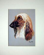 "REDUCED - AFGHAN HOUND DOG ART CARD PRINT MOUNTED 10 X 8"" - SALE"