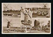 Sussex WINDMILLS m/view used 1955 RP PPC