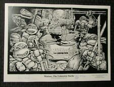 2012 MATISSE THE UNKNOWN TURTLE by Kevin Eastman Dave Sim SIGNED #125/360 TMNT