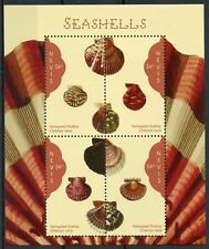 Nevis 2018 MNH Seashells Variegated Scallop 4v M/S Sea Shells Marine Stamps