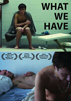 What We Have (2016, DVD New)