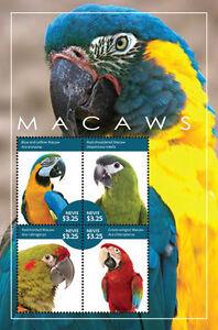 Nevis-2014-Fauna-Birds-Macaws