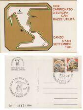 141262 CANZO CARTOLINA NUMERATA CAMPIONATO D' EUROPA CANI RAZZE UTILITA' 1984