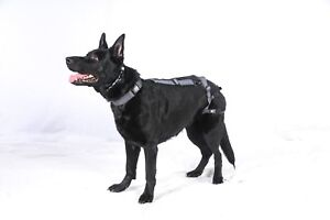 Dog Pregnancy Prevention Harness (Size XX-Large) SEE VIDEO