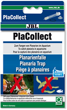 JBL Placollect - Planaria Flatworm Catcher Trap Remover No Poison Pla Collect