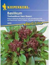 """Kiepenkerl Thaibasilikum """"  Siam Queen """" BasilikumSamen, Sämereien,3222  Kräuter"""