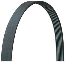 MerCruiser V6 V8 Serpentine Belt Alpha Bravo 18-1510 57-865615-003 57-865615Q03