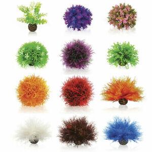 Oase BiOrb Topiary Flower Colour Balls Caulerpa Aquarium Plants Decorations