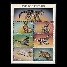 Gambia, Sc #1965, Mnh, 1997, S/S, Cats, Burmese, Tabby, Burmilla, 1Hid