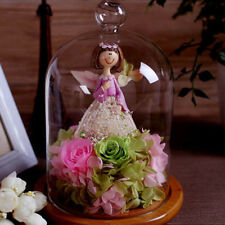 Table Display Clear Glass Cloche Bell Jar Micro Landscape Dried Flower Vase Dome