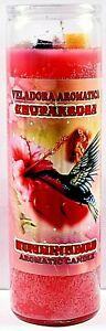 CANDLE COCKTAIL VELADORA HUMMINGBIRD PINK/ CHUPAROSA ROSA AROMATICA