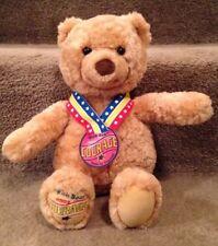 "Gund Wish Bear Courage Plush 2003 13"" May Department Stores"