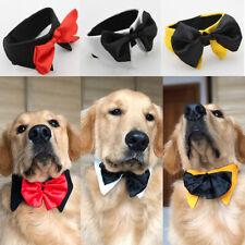 Pet Puppy Dog Cat Necktie Cravat Neckwear Adjustable Bow Ties Mix Color S-XXL