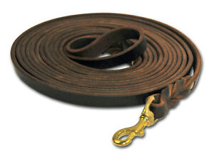 DT Professional Leather Tracking Leash with Brass Snap Hook