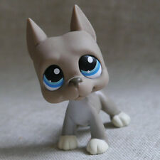 Grey Great Dane pubby dog LPS mini Action Figures #184 LITTLEST PET SHOP