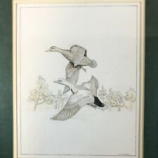 Ducks in Flight Original Ink and Watercolor Painting - Signed, Framed & Matted