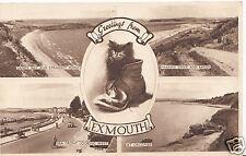 Devon Postcard - Greetings From Exmouth    DD155