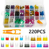 220Pc Assorted Mini & Standard Blade Fuses For Car Auto Van Truck Boat Bike Fuse