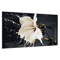 Tempered Glass Photo Print Wall Art Picture White Flower Splash Prizma GWA0316