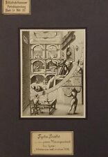 Tycho Brahe - alter Druck old print Porträt Astronom