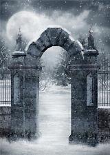 Snow Winter Scenic Photo Vinyl Backdrop Moon Castle Photography Background 5x7ft