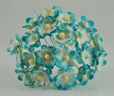 Mulberry Paper Flower Tiny Phlox daisy Picotee Light Bright Turquoise blue