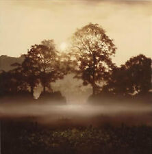 JOHN WATERHOUSE  ' THE BEAUTY OF NATURE '  LTD ED. FREE DELIVERY