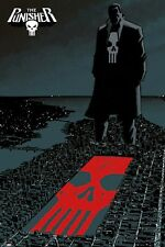 Marvel Comics Punisher Poster City Shadow Cover Art size 24x36