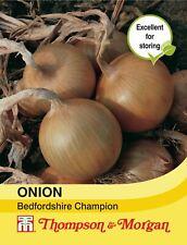 Thompson & Morgan - Vegetables - Onion Bedfordshire Champion - 250 Seed