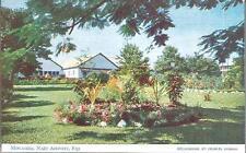 Nadi Airport, Fiji - Mocambo - postcard, stamps airport pmk 1955