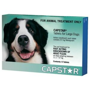 CAPSTAR Green 6 Tablets for Large Dogs | FREE SHIPPING