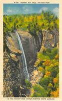 Hickory Nut Falls W. North Carolina Chimney Rock Section UNUSED Vintage POSTCARD
