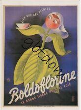 CP Pub BOLDOFLORINE - tisane pour le foie - rien que des plantes - repro affiche
