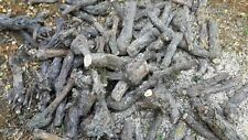 Rebknorzen ca. 20 Kg //  Brennholz, Grillholz, BBQ Holz, Weinreben