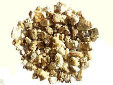 20lt A VERY SPECIAL Terreau Compost 100/% de tourbe reposant avec vermiculite