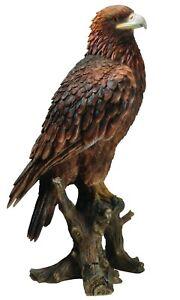 Vivid Arts Large Real Life Golden Eagle Home or Garden Ornament (XRL-GDEG-A)