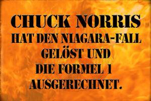Chuck Norris Spruch 23 Blechschild Schild gewölbt Metal Tin Sign 20 x 30 cm