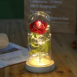 LED Rose im Glas Edle Kunst-Rose mit Beleuchtung in Echtglas-Kuppel rot