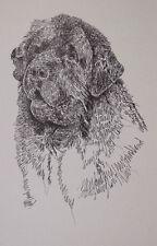Newfoundland Dog Art Portrait Print #64 Kline adds dog name free. Word Drawing